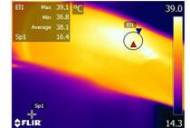 FLIR热像仪帮助中医艾灸的科学研究